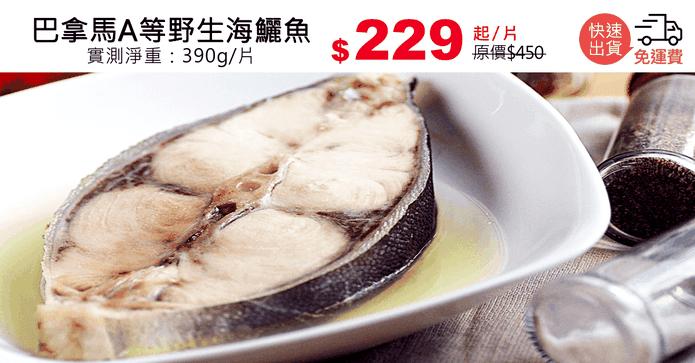 巴拿馬A等野生海鱺魚