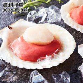 北海道巨無霸半殼扇貝