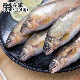 台灣大規格冷泉母香魚