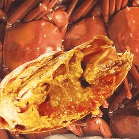 英國純淨深海爆膏甜紅蟹