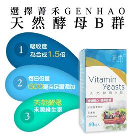 菁禾GENHAO天然酵母B群