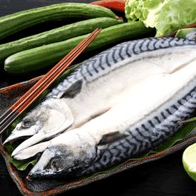挪威嚴選優質DHA大鯖魚